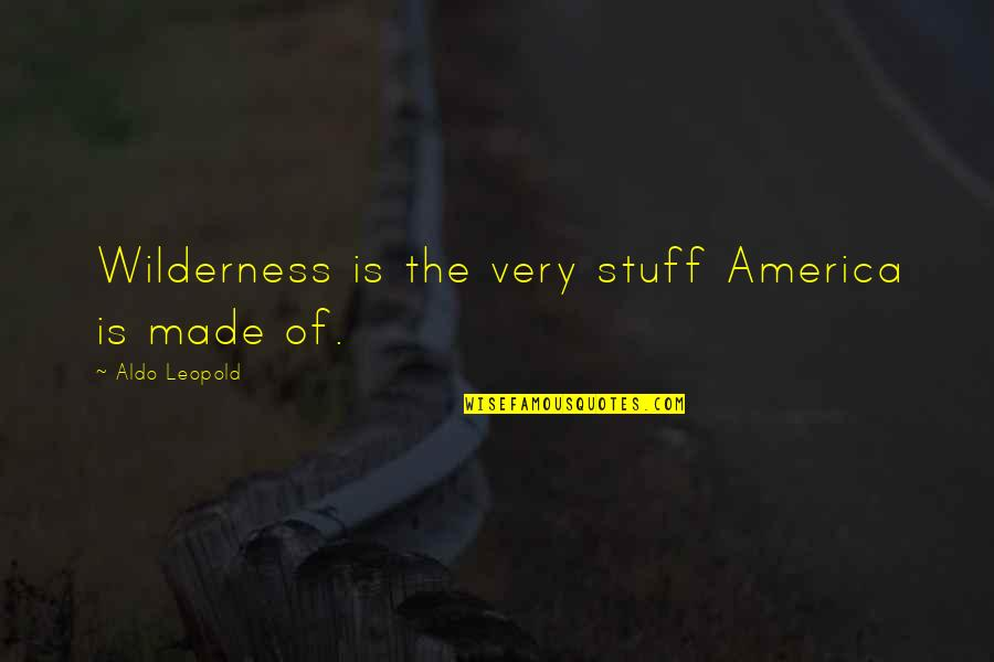 Aldo Leopold Quotes By Aldo Leopold: Wilderness is the very stuff America is made