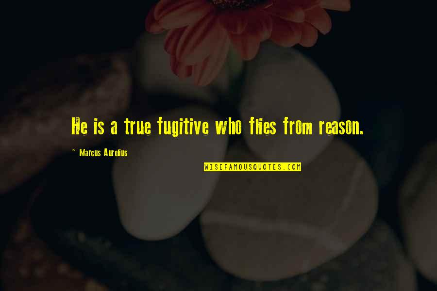 Alegran Quotes By Marcus Aurelius: He is a true fugitive who flies from