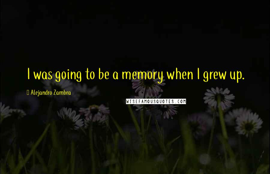 Alejandro Zambra quotes: I was going to be a memory when I grew up.