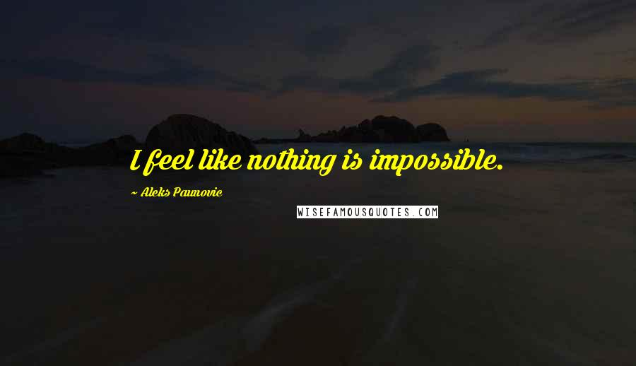 Aleks Paunovic quotes: I feel like nothing is impossible.