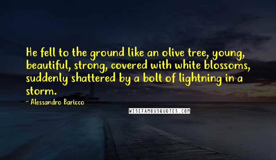 Alessandro Baricco quotes: He fell to the ground like an olive tree, young, beautiful, strong, covered with white blossoms, suddenly shattered by a bolt of lightning in a storm.