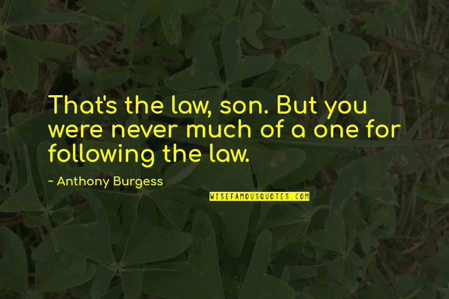Alex Delarge Quotes By Anthony Burgess: That's the law, son. But you were never