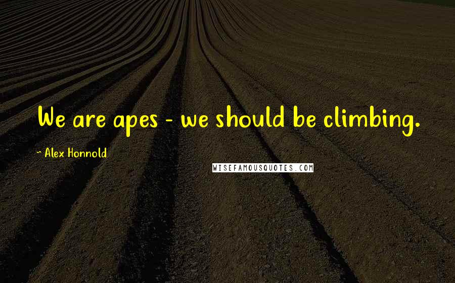 Alex Honnold quotes: We are apes - we should be climbing.