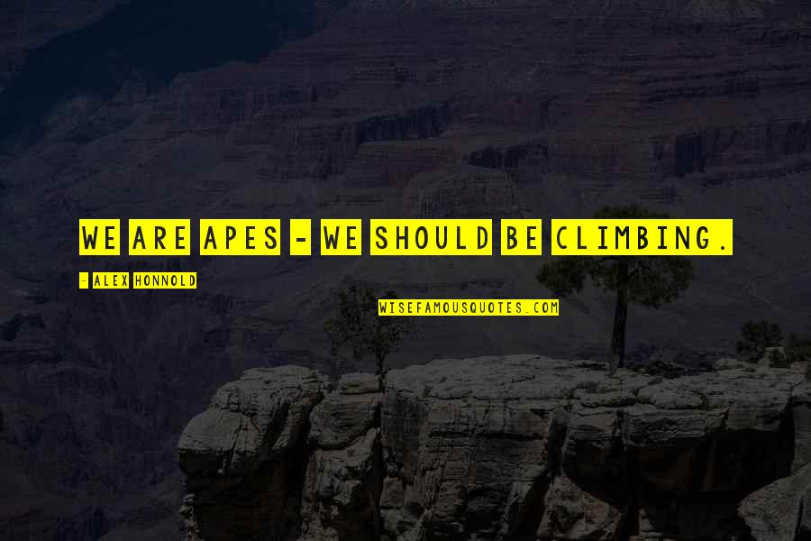 Alex Honnold Quotes By Alex Honnold: We are apes - we should be climbing.