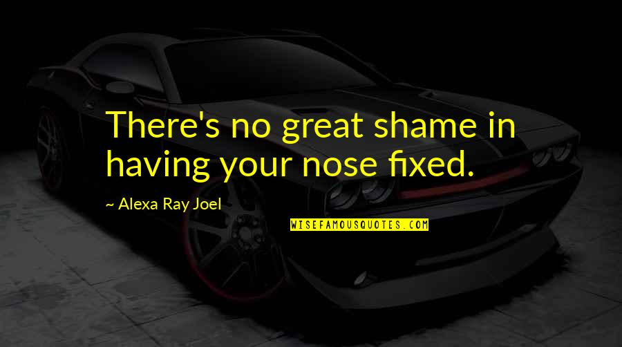 Alexa Ray Joel Quotes By Alexa Ray Joel: There's no great shame in having your nose