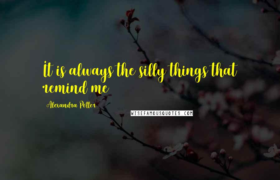 Alexandra Potter quotes: It is always the silly things that remind me