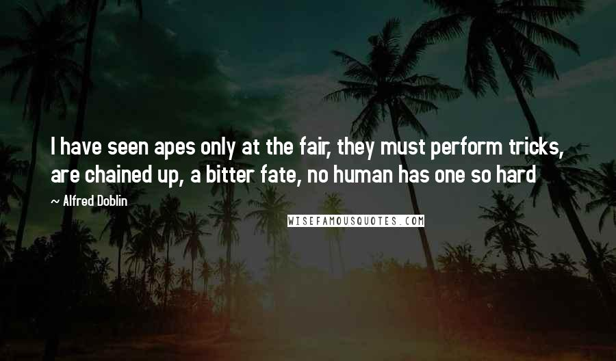 Alfred Doblin quotes: I have seen apes only at the fair, they must perform tricks, are chained up, a bitter fate, no human has one so hard