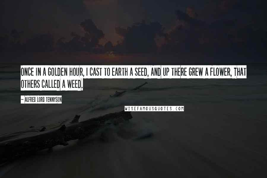 Alfred Lord Tennyson quotes: Once in a golden hour, I cast to earth a seed, And up there grew a flower, That others called a weed.