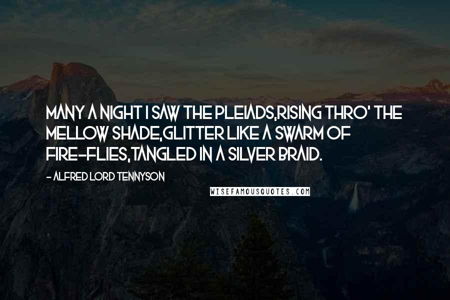 Alfred Lord Tennyson quotes: Many a night I saw the Pleiads,Rising thro' the mellow shade,Glitter like a swarm of fire-flies,Tangled in a silver braid.