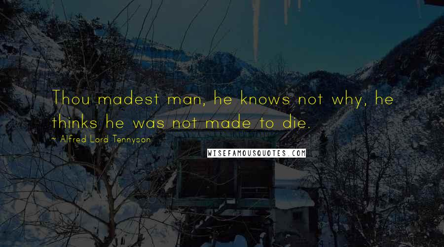 Alfred Lord Tennyson quotes: Thou madest man, he knows not why, he thinks he was not made to die.