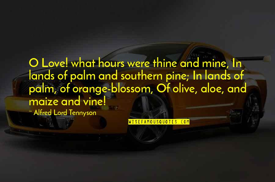 Alfred Pine Quotes By Alfred Lord Tennyson: O Love! what hours were thine and mine,