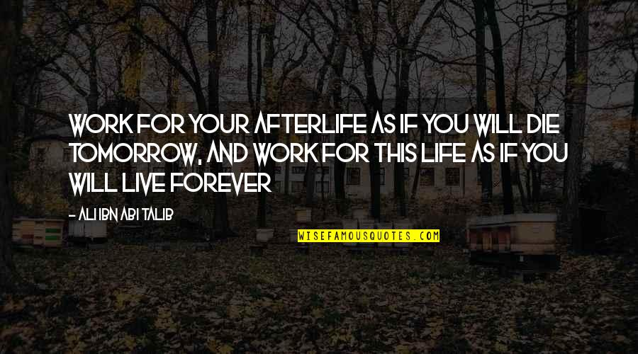 Ali As Quotes By Ali Ibn Abi Talib: Work for your afterlife as if you will