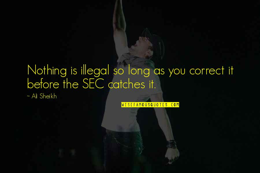 Ali As Quotes By Ali Sheikh: Nothing is illegal so long as you correct