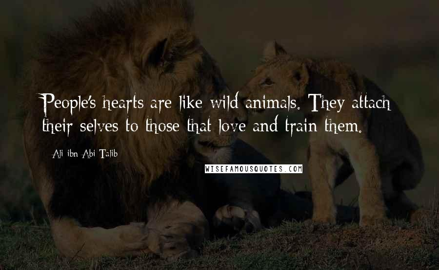 Ali Ibn Abi Talib quotes: People's hearts are like wild animals. They attach their selves to those that love and train them.