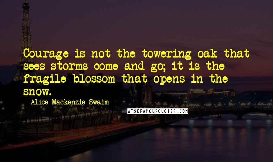 Alice Mackenzie Swaim quotes: Courage is not the towering oak that sees storms come and go; it is the fragile blossom that opens in the snow.
