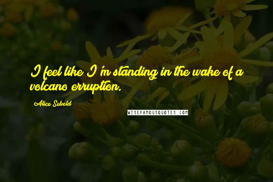 Alice Sebold quotes: I feel like I'm standing in the wake of a volcano erruption.
