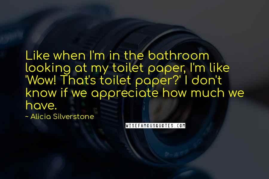 Alicia Silverstone quotes: Like when I'm in the bathroom looking at my toilet paper, I'm like 'Wow! That's toilet paper?' I don't know if we appreciate how much we have.