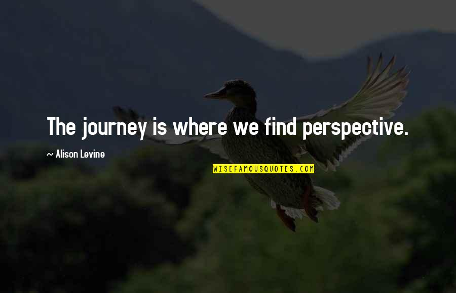Alison Levine Quotes By Alison Levine: The journey is where we find perspective.