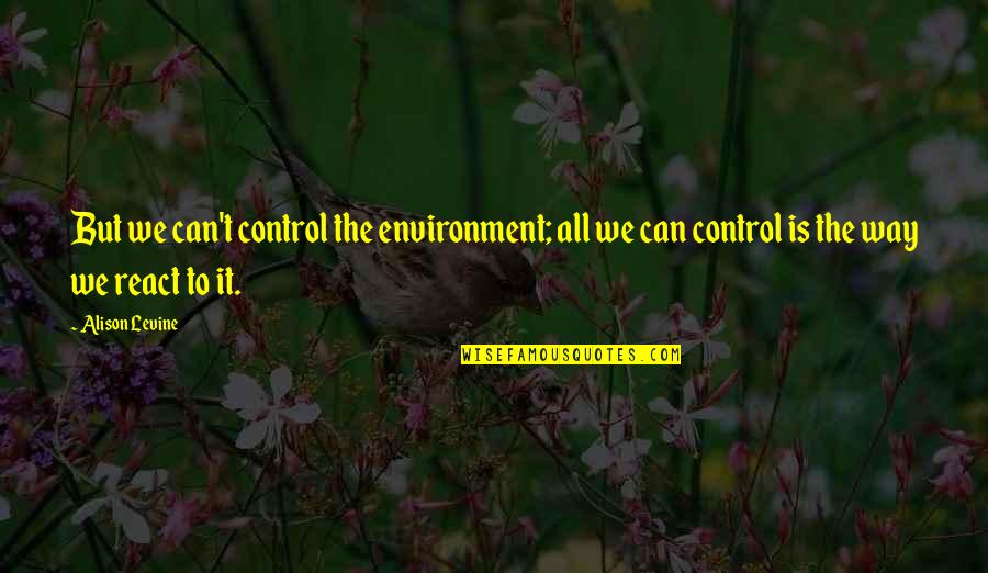 Alison Levine Quotes By Alison Levine: But we can't control the environment; all we