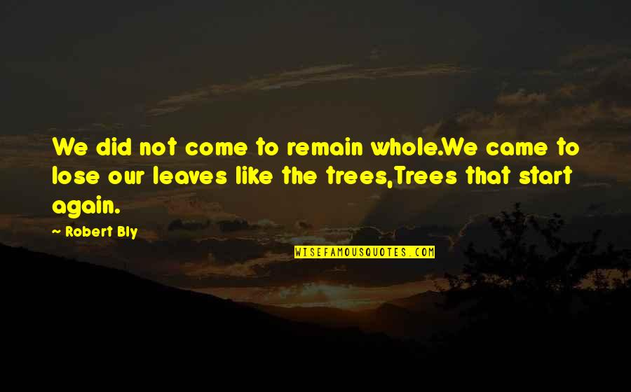 All Alone Again Quotes By Robert Bly: We did not come to remain whole.We came