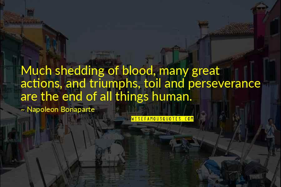 All Great Things Quotes By Napoleon Bonaparte: Much shedding of blood, many great actions, and