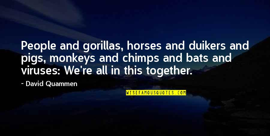 All In This Together Quotes By David Quammen: People and gorillas, horses and duikers and pigs,