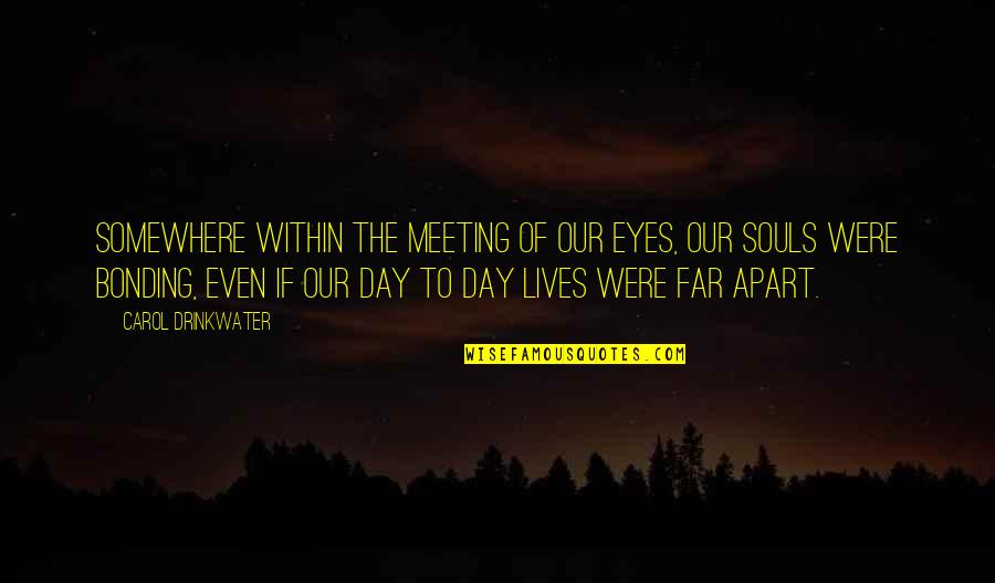 All Souls Day Quotes By Carol Drinkwater: Somewhere within the meeting of our eyes, our