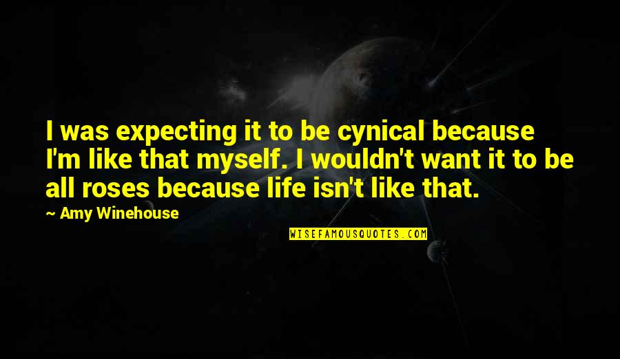 All To Myself Quotes By Amy Winehouse: I was expecting it to be cynical because