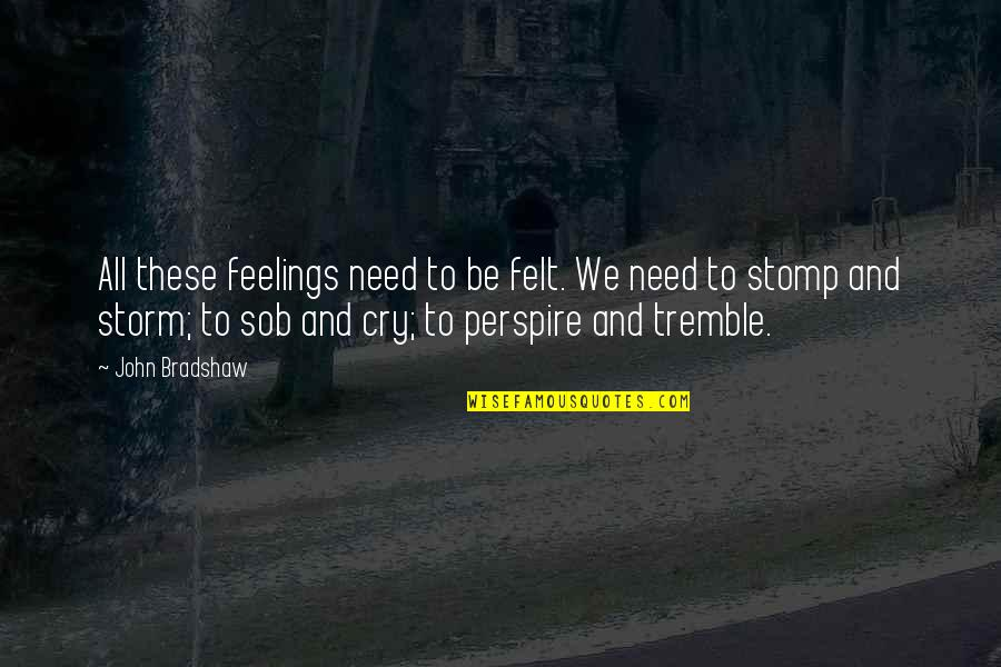 All We Need Quotes By John Bradshaw: All these feelings need to be felt. We