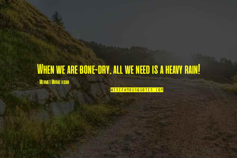 All We Need Quotes By Mehmet Murat Ildan: When we are bone-dry, all we need is