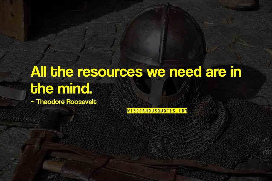 All We Need Quotes By Theodore Roosevelt: All the resources we need are in the