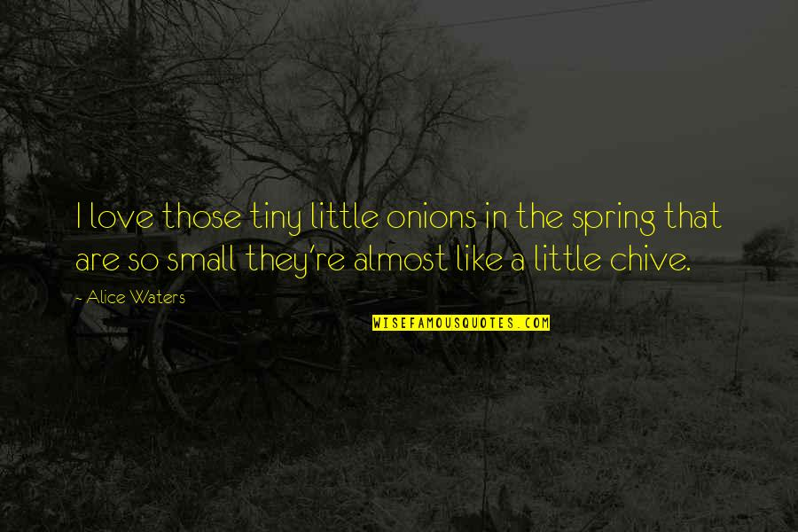 Almost Quotes By Alice Waters: I love those tiny little onions in the