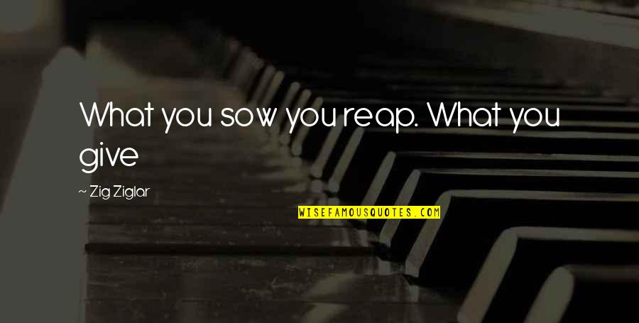 Altero Quotes By Zig Ziglar: What you sow you reap. What you give
