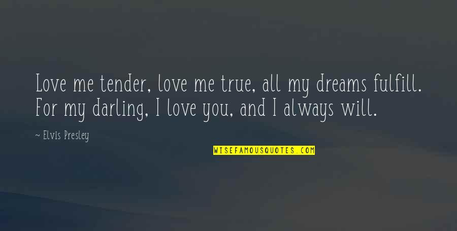 Always You And Me Quotes By Elvis Presley: Love me tender, love me true, all my