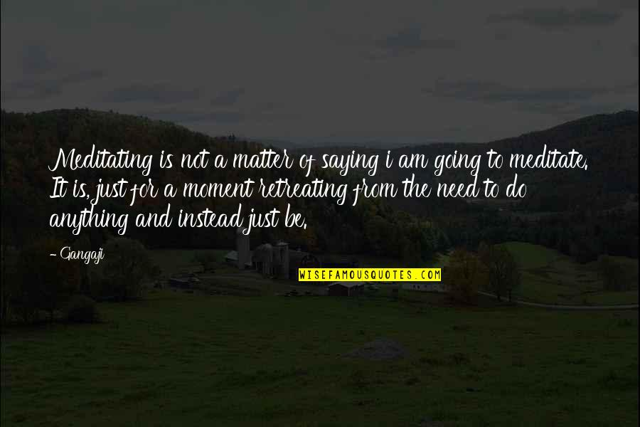 Am Just Saying Quotes By Gangaji: Meditating is not a matter of saying i