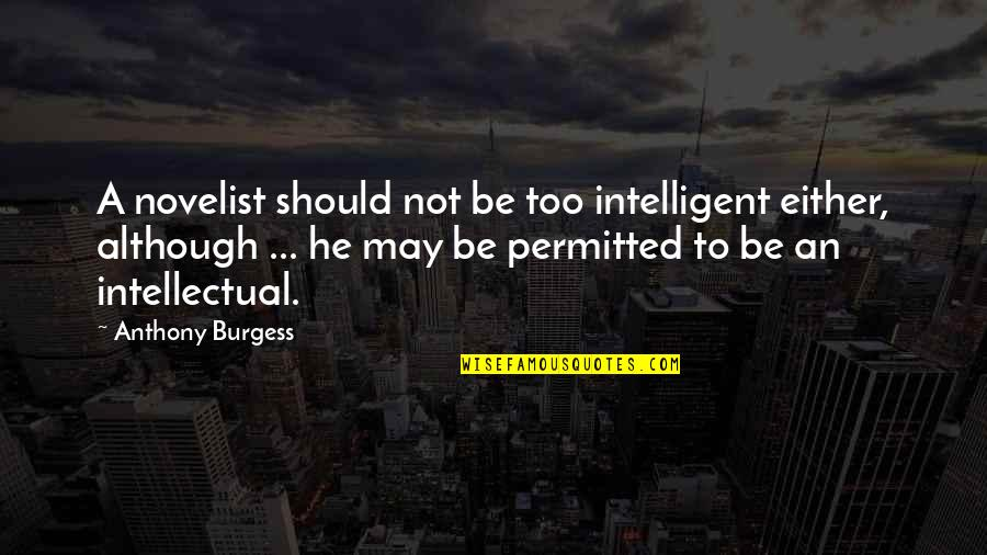 Amadan Quotes By Anthony Burgess: A novelist should not be too intelligent either,