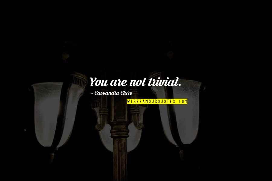 Amadou Diallo Quotes By Cassandra Clare: You are not trivial.