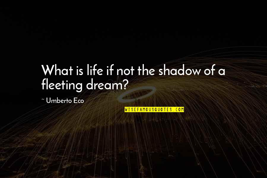 Amadou Diallo Quotes By Umberto Eco: What is life if not the shadow of