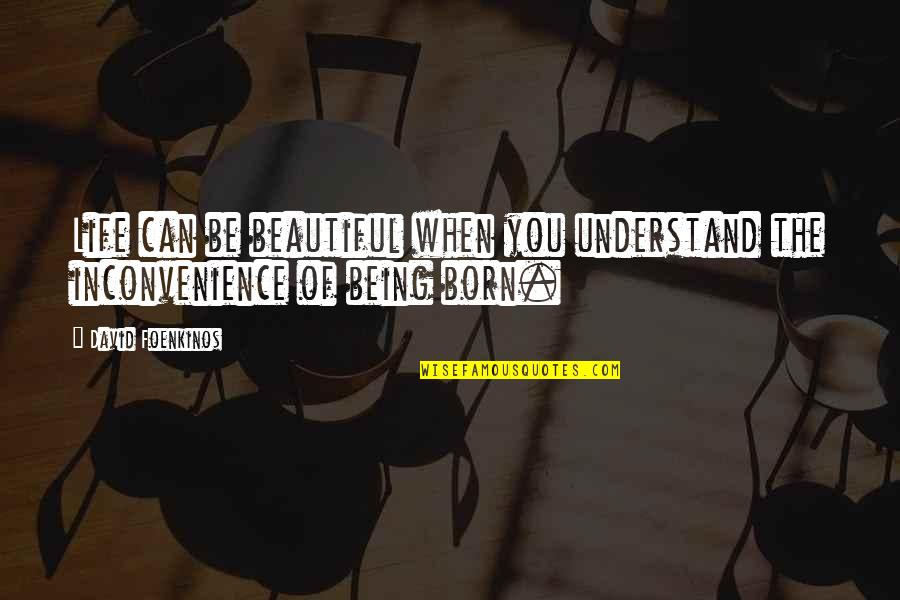 Amazing Favorite Inspirational Quotes By David Foenkinos: Life can be beautiful when you understand the
