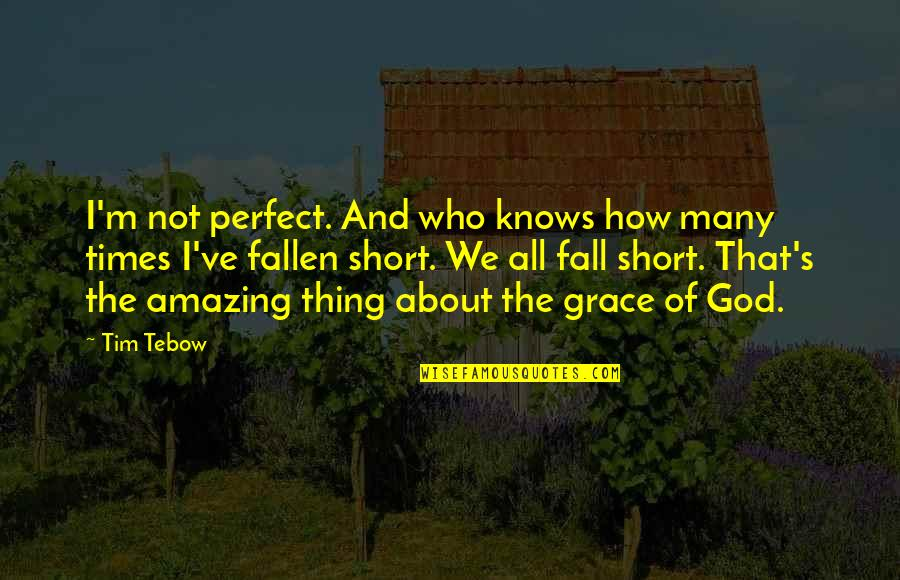 Amazing Grace Quotes By Tim Tebow: I'm not perfect. And who knows how many