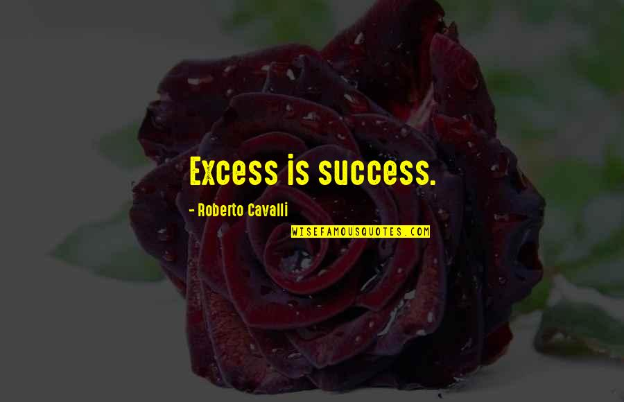 Amber Pacific Quotes By Roberto Cavalli: Excess is success.