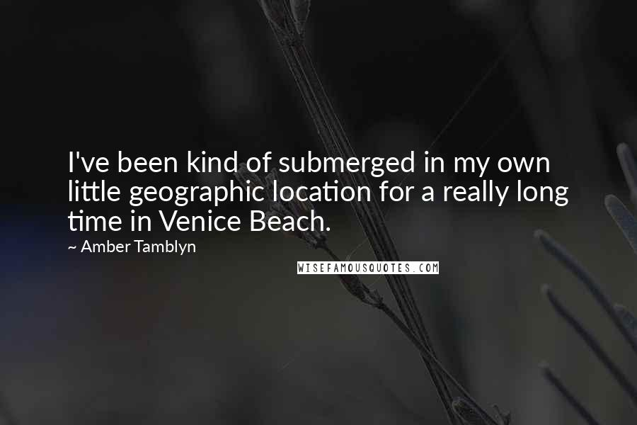 Amber Tamblyn quotes: I've been kind of submerged in my own little geographic location for a really long time in Venice Beach.