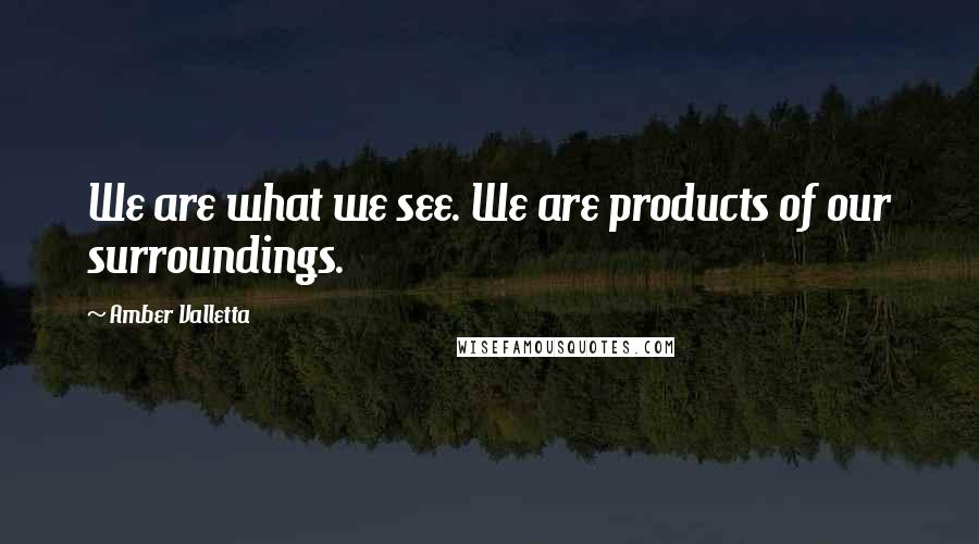 Amber Valletta quotes: We are what we see. We are products of our surroundings.