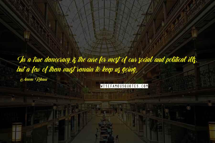 Ameen Rihani quotes: In a true democracy is the cure for most of our social and political ills, but a few of them must remain to keep us going.