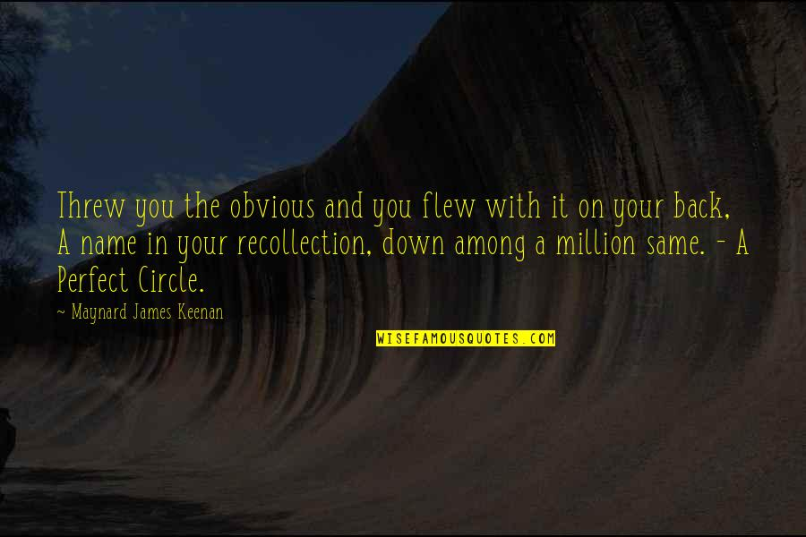 American Immigration Quotes By Maynard James Keenan: Threw you the obvious and you flew with
