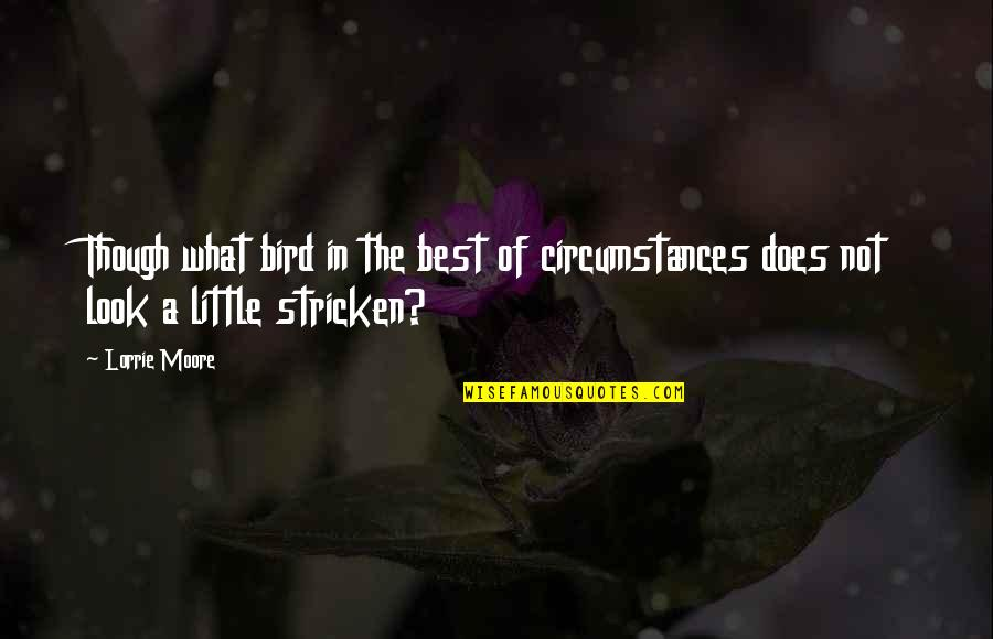 American Mcgee's Alice Madness Returns Quotes By Lorrie Moore: Though what bird in the best of circumstances