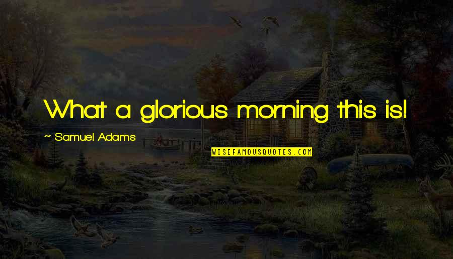 American Revolution Quotes By Samuel Adams: What a glorious morning this is!