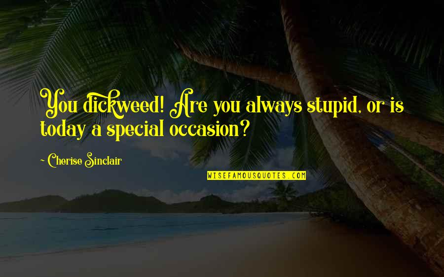 Americnns Quotes By Cherise Sinclair: You dickweed! Are you always stupid, or is