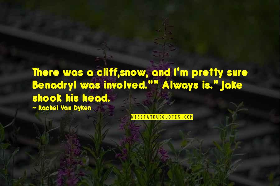 Amiel Journal Quotes By Rachel Van Dyken: There was a cliff,snow, and I'm pretty sure