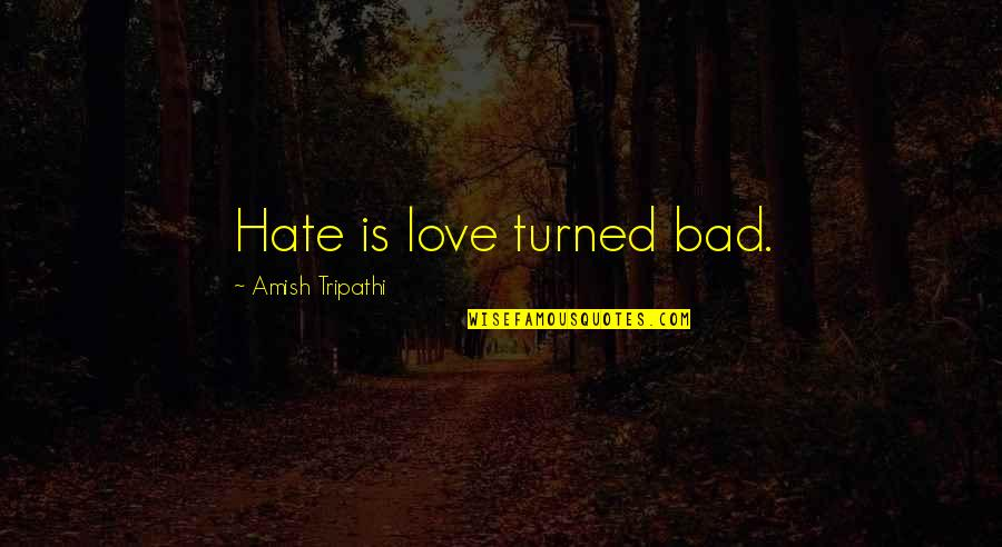 Amish Love Quotes By Amish Tripathi: Hate is love turned bad.